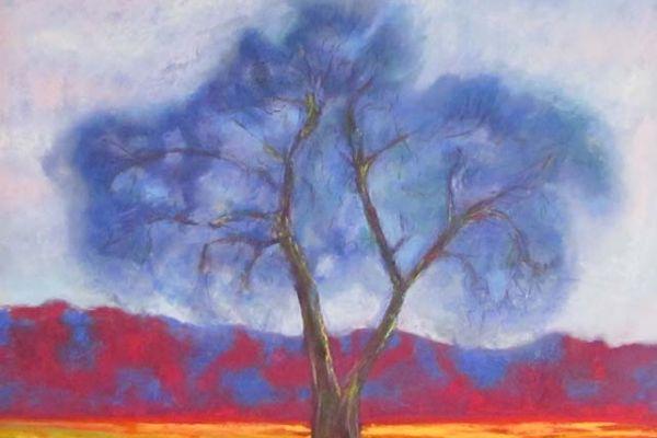 tree-16x16C422AD82-28F8-EA44-B837-0349B423FE5A.jpg