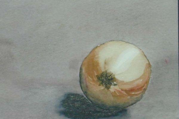 onion-still-life-cropped8BCDC8C7-B834-106A-1C46-B6F868160B84.jpg