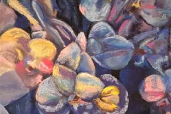 love-c-orchid-dream-blues9BA083D8-0921-E9EF-C08F-217DDCCA8FCF.jpg